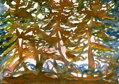 Redwoods at Big Creek Fabric Pigments