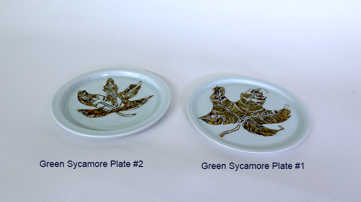 1 green sycamore plates