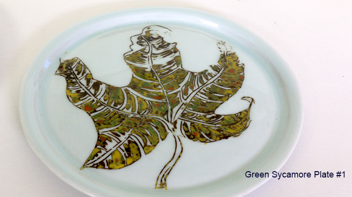 3 green sycamore plate #1