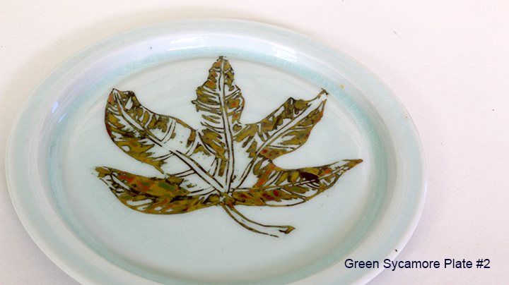 4 green sycamore plate #2